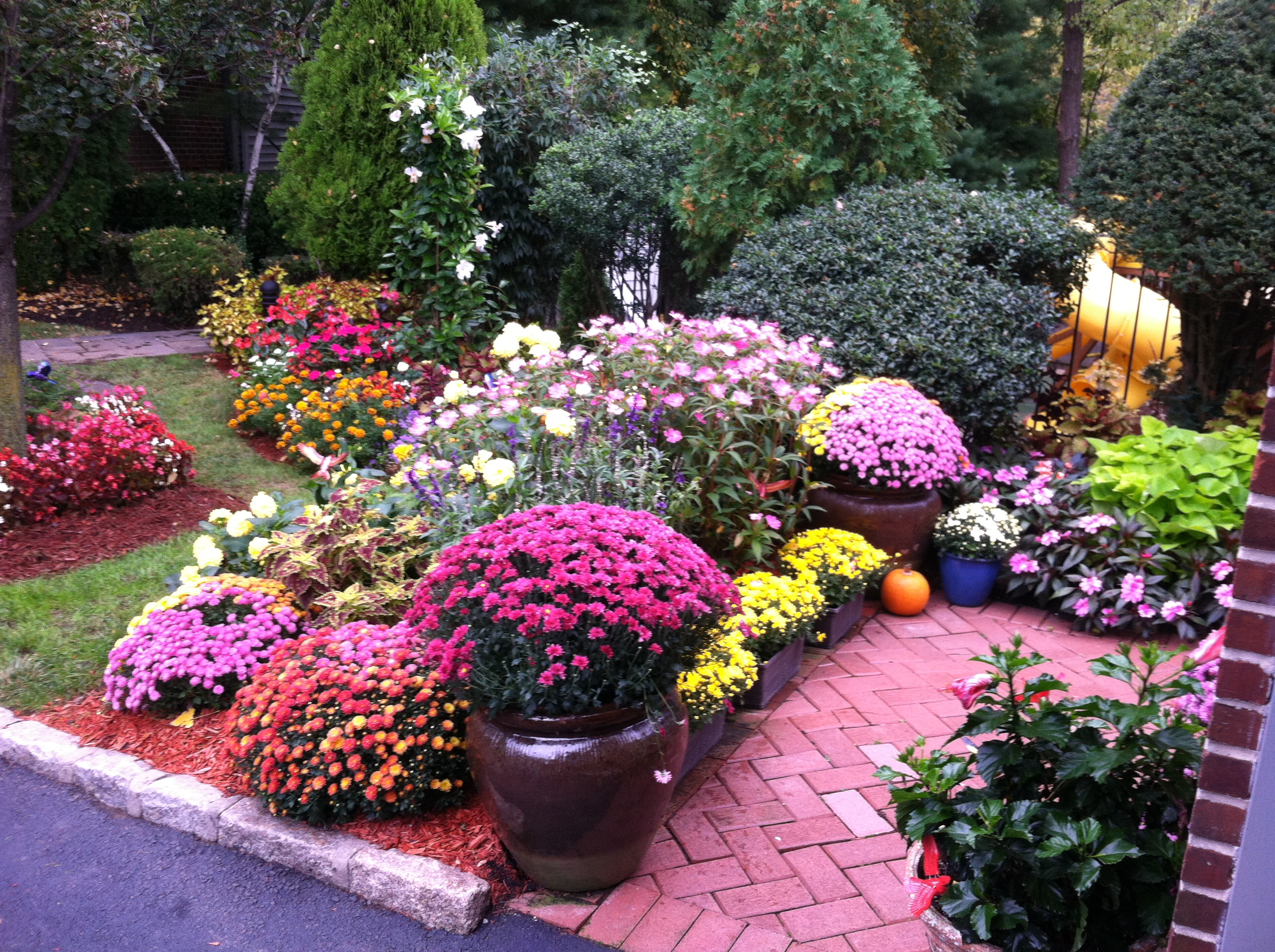 End of the Season photo of customer Cliff Nyman's summer and fall planting design!